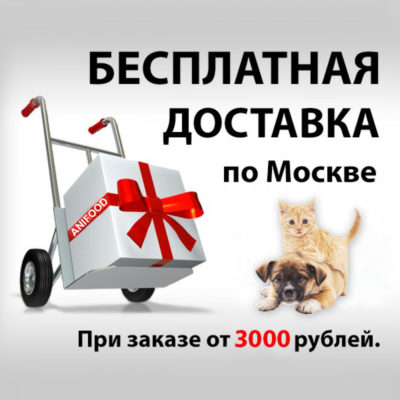 dostavka-700x700